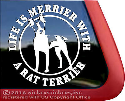 LIFE IS MERRIER WITH A RAT TERRIER ~ Cute Dog Window Decal Sticker