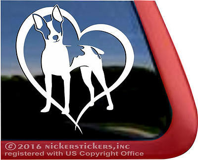 Rat Terrier Love Heart Vinyl Dog Decal Sticker | NickerStickers