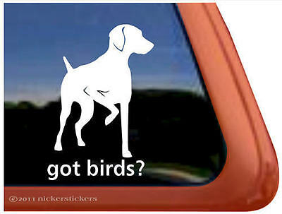 GOT BIRDS? ~ High Quality Vinyl Hungarian Vizsla Dog Window Sticker Decal