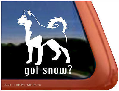 GOT SNOW? ~ High Quality Vinyl Alaskan Malamute Dog Window Sticker Decal