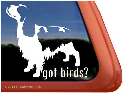GOT BIRDS? ~  High Quality English Springer Spaniel Dog Window Sticker Decal