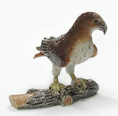 R188 - Northern Rose  Miniature Red Tailed Hawk on Branch