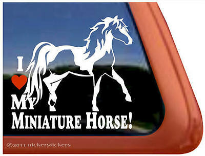I LOVE MY MINIATURE HORSE! ~ Pinto Miniature Horse Trailer Window Decal Sticker