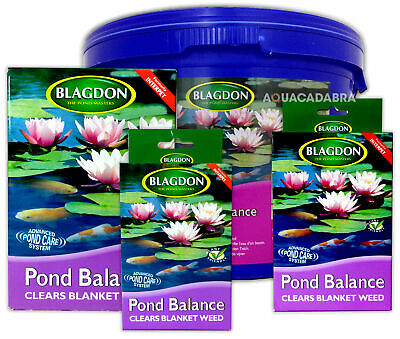 Blagdon Pond Balance Blanketweed Treatment Blanket Weed Interpet Koi Fish Garden