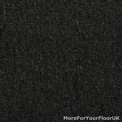 Anthracite Black Dark Grey Hardwearing Feltback Carpet Lounge Bedroom CHEAP ROLL
