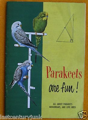 Parakeets Are Fun All About Budgerigars & Love Birds 1955