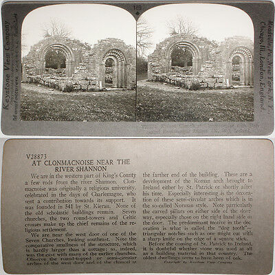 Keystone Stereoview of Animals /& Peasant Home in IRELAND From RARE 1200 Card Set