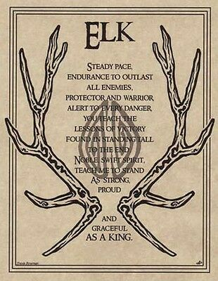 ELK PRAYER - POSTER  Wicca Pagan Witch Witchcraft Goth BOOK OF SHADOWS TOTEM