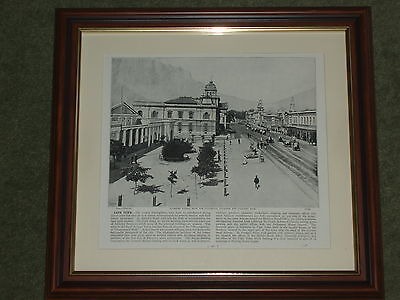 1895 Print over 100 years old Cape Town Adderley St (also available unframed)