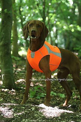 Hurtta Polar High Visibility Vest - Keeping your dog visible and safe