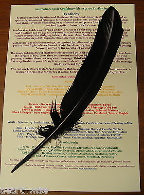 BLACK FEATHER With AUSTRALIAN BUSH CRAFTING CHART Wicca Pagan Goth Punk Witch