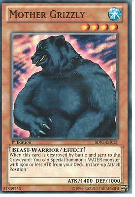 YU-GI-OH: MOTHER GRIZZLY - SDRE-EN021 - 1st EDITION