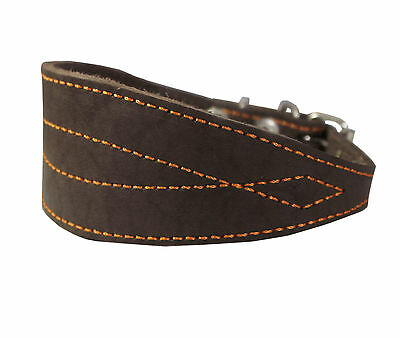 """Real Leather Tapered Extra Wide Whippet Dog Collar 2"""" Wide, Fits 11.5""""-15"""" Neck,"""