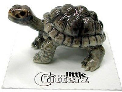 Little Critterz  LC330 - Galapagos Tortoise (Buy 5 get 6th free!)