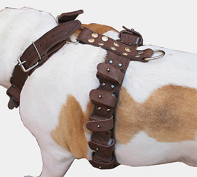 """5.5 lbs Real Leather Weighted Dog Harness Exercise Training  31""""-35"""" Chest Size"""
