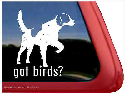 Got Birds? ~ High Quality Vinyl English Setter Gun Dog Window Decal Sticker