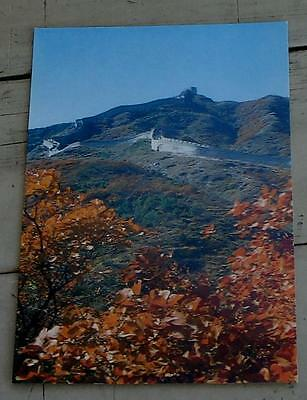 Vintage Color Photo Postcard, Red Leaves At The Great Wall, VG COND