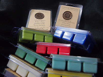 yummy melts ParaSoy Candle Wax Tarts Lot of 10 Break away wickless wax melts