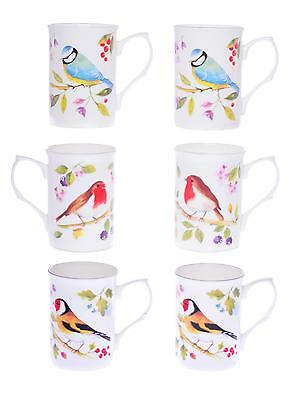 GARDEN BIRDS SET OF 6 10 Fl Oz BONE CHINA BEAKERS/ MUGS gift boxed