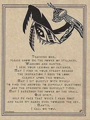 MANTIS PRAYER POSTER  A4 SIZE Wicca Pagan Witch Witchcraft BOOK OF SHADOWS