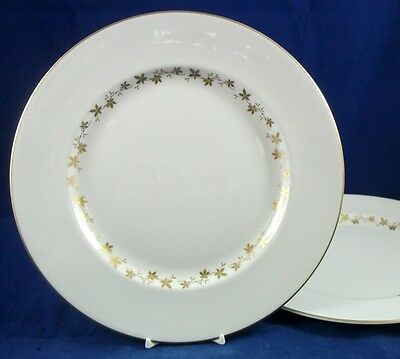 Royal Doulton CITADEL 2 Dinner Plates TC1003 GREAT CONDITION