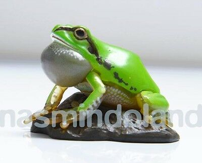 Takara Kaiyodo ChocoQ Tree Frog A animatales  Japanese color variant Figure
