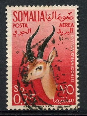 Somalia 1955 SG#294, 75c Air, Gerenuk Used #A68768
