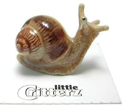 LC532  little Critterz Miniature Garden Snail (Buy any 5 get 6th free!)