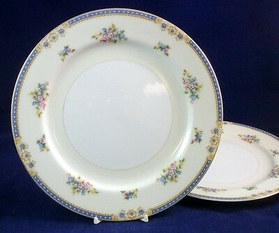 National JAPAN LANGLEY 2 Dinner Plates GREAT CONDITION