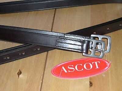 """Ascot Stirrup Leathers Stainless Steel Buckles 32""""-60"""" Black/Brown"""