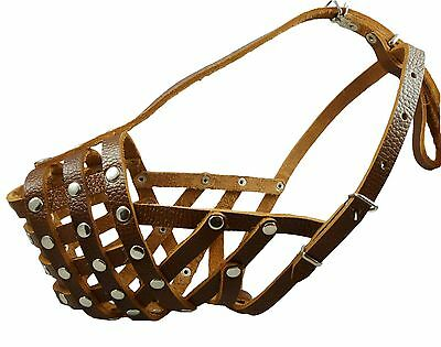 Secure Genuine Leather Mesh Basket Dog Muzzle Golden Retriever Rottweiler