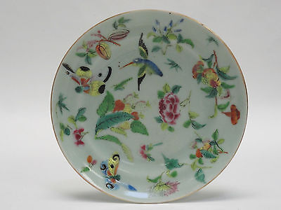 ANTIQUE Mid 19 c CHINESE CELADON ENAMELED FAMILLE ROSE PORCELAIN PLATE