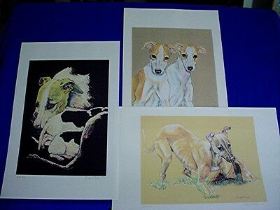 Whippet Greyhound IG 3 prints of original pastel portraits Cindy A. Conter P1