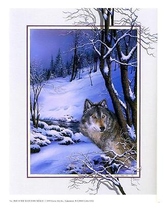 Wolf Art: The Watch - Beautiful 9x11 In. Art Print