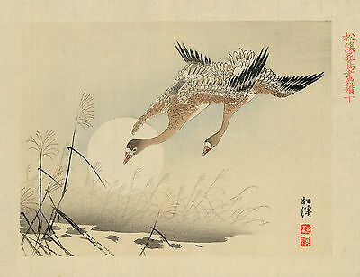 Japanese Print Reproductions: Pair of geese flying over a pond - Fine Art Print