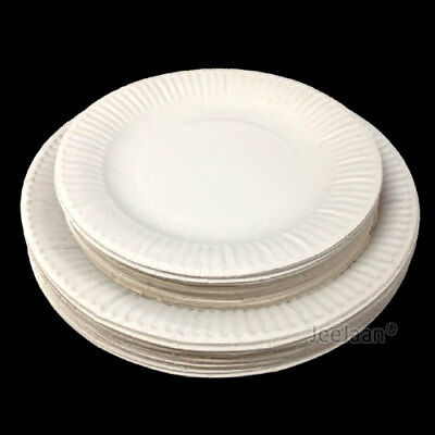 Paper Plates Disposable Party Supplies Tableware Serving Celebrations Catering