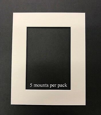 10 X 8 Inch White Mounts to fit 6 x 4 Inch Photo & Picture - 5 PACK
