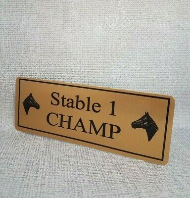Personalised Horse Name Plaque Stable Door 200mmX75mm Silver