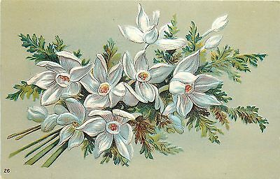 Floral Embossed Chromolithographed PC White Narcissus & Meadow Rue 26 Germany?