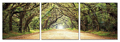 FRAMED Hot Large Modern Contemporary Canvas Wall Art Print Painting Road Trees