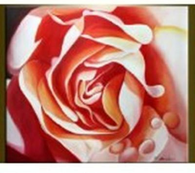 Wall Art Hand Painted Canvas Oil Painting Home Decor Decals OP-FL15 With Frame