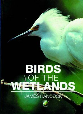 Birds of the Wetlands by James A. Hancock (Hardback, 2002)