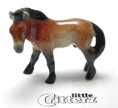 "Little Critterz - LC947 - Przewalski Horse named ""Tahki"" (Buy 5 get 6th free!)"