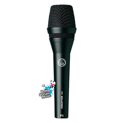 AKG Perception Live P5 Dynamic Vocal Live and Studio Recording Microphone