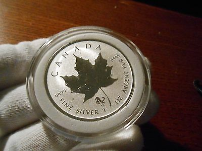 2014 Horse Privy Canadian Silver Maple Leaf (Reverse Proof)