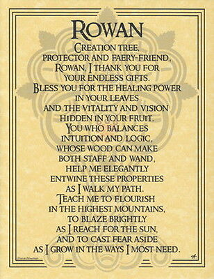 ROWAN TREE - POSTER  A4 SIZE Wicca Pagan Witch Witchcraft Goth  BOOK OF SHADOWS