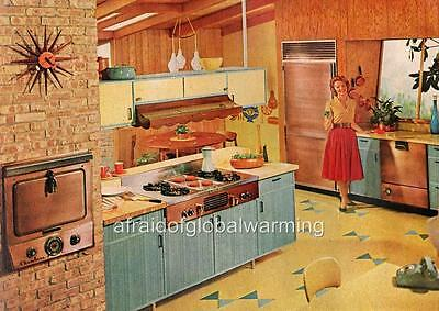 Print. 1950s - 60s. Housewife in Kitchen