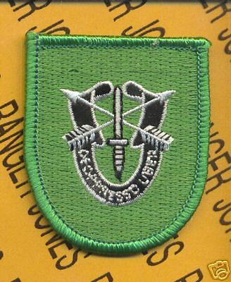 10th Special Forces Airborne beret flash DUI patch B