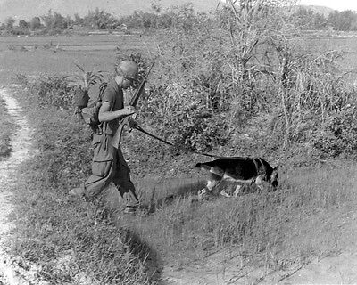 """SP4 Bealock and scout dog """"Chief"""" on patrol - Vietnam War Photo"""