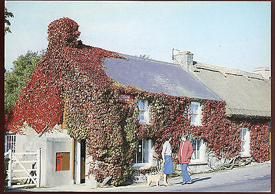 Lisbane Post Office Country Down Postcard FDI Unused #C11197A